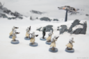 FFG SW Legion Snowtrooper 4