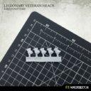 Kromlech Legionary Veteran Heads Raven Pattern 4
