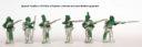 Perry Miniatures Neue Portugiesen 03