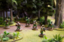 FFG SWL Commandos3