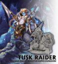Ninja Division Super Dungeon Explore Tusk Raider 1