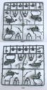 Perry Miniatures Diverse Neuheiten 07
