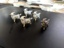 Dungeons Doggies KS Prev10