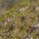 Bandua Wargames IMPERIAL CITY JUNGLE 6'X4' 5