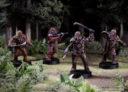 Fantasy Flight Games Star Wars Legion Wookiee Warriors Unit Expansion 4