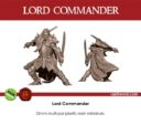 LSM Last Sword Miniatures Elven Lords II Dragon's Roar 10