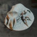 Mirico Shanara Triceratopr Prev04