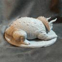 Mirico Shanara Triceratopr Prev06