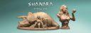 Mirico Shanara Triceratopr Prev07