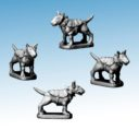 Northstar Frostgrave Fighting Dog Preview