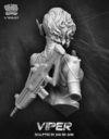 Nutsplanet Viper 06