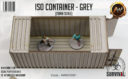 Antenocitis Workshop ISO Container – Grey 5