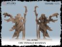GT Studio Orc Warband Collectors By Yedharo And GT Studio Creations 14