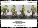 GT Studio Orc Warband Collectors By Yedharo And GT Studio Creations 37