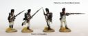 Perry Miniatures Neue Franzosen 05