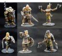 ILC Viking Legends Kickstarter 5