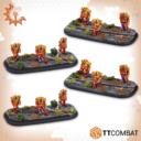 TTCombat DZC Shaltari Firstborn 01