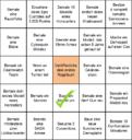 Hobby Bingo 2020 Christian 1