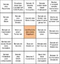 Hobby Bingo 2020 Christian