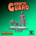 Lucid PerimeterGuard