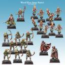 SC Wood Elves Army Starter