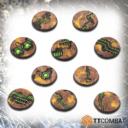 TTCombat TombWorldBases32 01