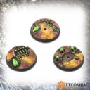 TTCombat TombWorldBases32f 01