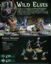 WP Warploque Arcworlde Kickstarter Imperials 14