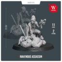 Artel W Miniatures Ravenous Assassin & Warlock Of The Crimson Legion