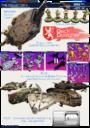 Kickstarter Starship V Sleipnir24