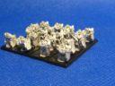 Vanguard Miniatures Forlorn Hope Storm Squads 06