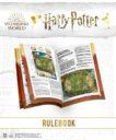 KM Harry Potter Catch The Snitch 36