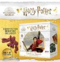 KM Harry Potter Catch The Snitch 4