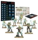 Games Workshop Warcry Sylvaneth 1