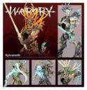 Games Workshop Warcry Sylvaneth 2