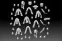 El Mutanto's 3D Workshop Lady Powered Knights 2