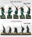 Kensei Undead Rising Kickstarter A 4