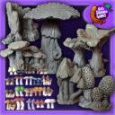 BadSquiddo Mushroomtopia