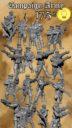 SW Imperium Desertum Imperium Immortalis 20
