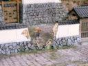 3DAlienWorlds Samurai Ruined Stone Wall 1