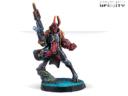 Infinity Agent Dukash Multi Rifle 02