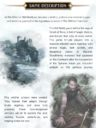 GoB The Witcher Old World Kickstarter 37