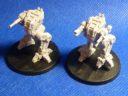 Novan Regulars – Locust Battle Striders 2