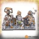 TTCombat Trolls 03