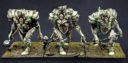 PB Incarnate Sentinels 3