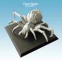 Spellcrow GiantSpider 02