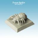 Spellcrow ForestSpider 02