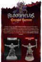 TF Bloodfields Eternal Sorrow Kickstarter 1