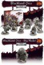 TF Bloodfields Eternal Sorrow Kickstarter 20