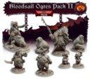 TF Bloodfields Eternal Sorrow Kickstarter 33